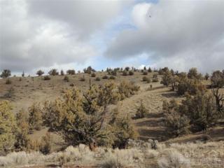 18753 SE Doubtful Dirt Road  , Prineville, OR 97754 (MLS #201503298) :: Birtola Garmyn High Desert Realty