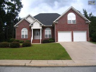 129  Olivia Way  , Lexington, SC 29072 (MLS #339074) :: Exit Real Estate Consultants