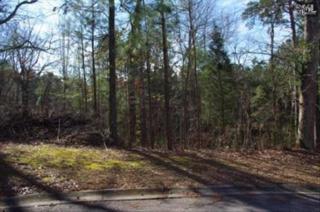 309  Bryars Court  , Lexington, SC 29072 (MLS #345317) :: Exit Real Estate Consultants