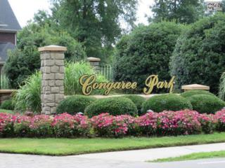 117  Congaree Park Drive  19, West Columbia, SC 29169 (MLS #345576) :: Exit Real Estate Consultants