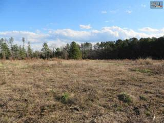 3835  Highway 378  , Leesville, SC 29070 (MLS #346257) :: Exit Real Estate Consultants