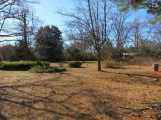 0 S Bedenbaugh Street  B, Leesville, SC 29070 (MLS #347123) :: Exit Real Estate Consultants