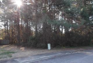 437  Oxford Road  , Lexington, SC 29072 (MLS #348867) :: Exit Real Estate Consultants