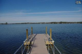149  Haywain Drive  , Chapin, SC 29036 (MLS #349337) :: Exit Real Estate Consultants