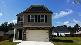 636  Colony Lakes Drive  59, Lexington, SC 29073 (MLS #349754) :: Exit Real Estate Consultants