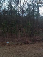 404  Rose Creek Lane  Lot 96, Columbia, SC 29229 (MLS #351506) :: Exit Real Estate Consultants
