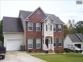 300  Gallatin Circle  , Irmo, SC 29063 (MLS #353399) :: Exit Real Estate Consultants