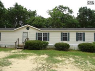 815  Hayden Road  , North, SC 29112 (MLS #354654) :: Exit Real Estate Consultants