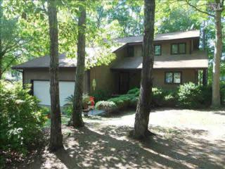 232  Smallwood Drive  , Chapin, SC 29036 (MLS #354690) :: Exit Real Estate Consultants