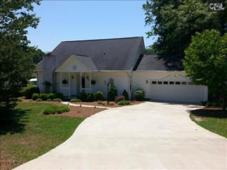 500  John Ballentine Road  , Irmo, SC 29063 (MLS #355363) :: Exit Real Estate Consultants