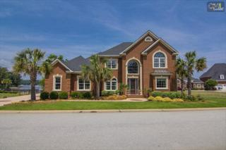 204  Pilgrim Point Drive  , Lexington, SC 29072 (MLS #355696) :: Exit Real Estate Consultants