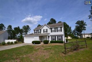137  Dutch Court  , Lexington, SC 29073 (MLS #356248) :: Exit Real Estate Consultants