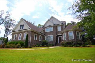 203  Canterwood Road  , Irmo, SC 29063 (MLS #357998) :: Exit Real Estate Consultants