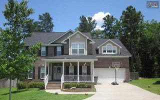 35  Pipestove Court  , Irmo, SC 29063 (MLS #358037) :: Exit Real Estate Consultants