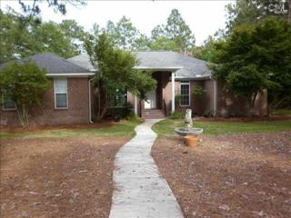 12  Egret Cove  , Camden, SC 29020 (MLS #358485) :: Exit Real Estate Consultants