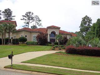 4  Dunleith Court  , Irmo, SC 29063 (MLS #358608) :: Exit Real Estate Consultants