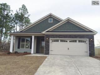 210  Viking Lane  55, Lexington, SC 29073 (MLS #358686) :: Exit Real Estate Consultants