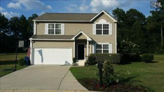 316  Smokey Court  , Lexington, SC 29073 (MLS #358974) :: Exit Real Estate Consultants
