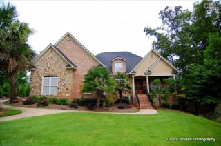 317  Donerail Court  , Irmo, SC 29063 (MLS #359360) :: Exit Real Estate Consultants