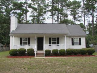 295  Roberts Street  , Lexington, SC 29072 (MLS #359366) :: Exit Real Estate Consultants