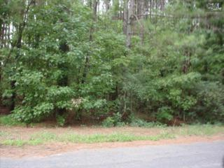 0  Old Shealy Road  , Chapin, SC 29036 (MLS #359874) :: Exit Real Estate Consultants