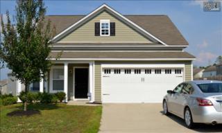 599  Silver Spoon Lane  , Elgin, SC 29045 (MLS #360784) :: Exit Real Estate Consultants