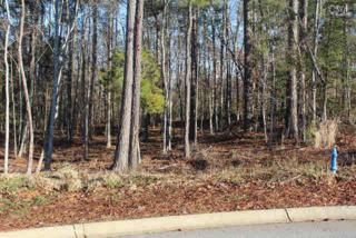 205  Oak Haven Drive  , Lexington, SC 29072 (MLS #360880) :: Exit Real Estate Consultants