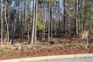 205  Oak Haven Drive  , Lexington, SC 29072 (MLS #360880) :: Exit Real Estate Consultants