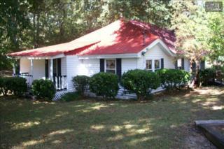 1511  Wildwood Point  , Leesville, SC 29070 (MLS #360984) :: Century 21 | J. Bolos