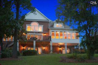 244  Edgewood Drive  , Chapin, SC 29036 (MLS #361072) :: Exit Real Estate Consultants