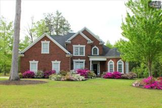 300  Connie Court  , Lexington, SC 29072 (MLS #361245) :: Exit Real Estate Consultants
