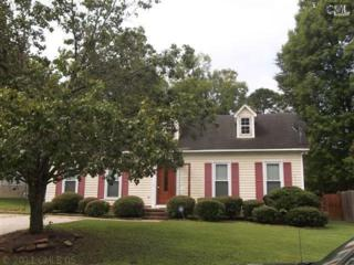 121  Grayside Road  , Irmo, SC 29063 (MLS #361249) :: Exit Real Estate Consultants
