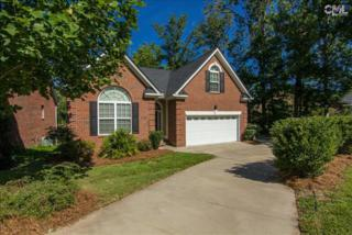 538  Lilypad Court  Lot 7, Chapin, SC 29036 (MLS #361384) :: Exit Real Estate Consultants