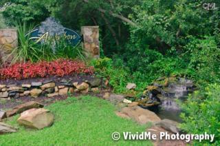 308  Kings Creek Road  , Irmo, SC 29063 (MLS #361418) :: Exit Real Estate Consultants