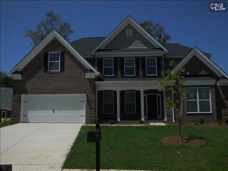 65  Fork Branch Court  , Irmo, SC 29063 (MLS #361430) :: Exit Real Estate Consultants