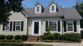 318  Barger Circle  , Irmo, SC 29063 (MLS #361566) :: Exit Real Estate Consultants