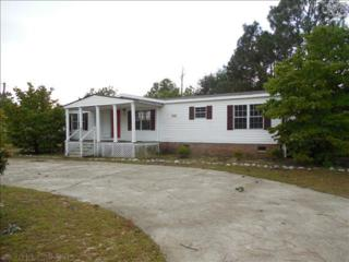329  Oakey Springs Drive  , Gaston, SC 29053 (MLS #361719) :: Exit Real Estate Consultants