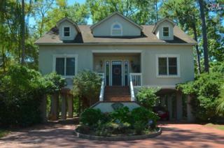 305  Saint Thomas Church Road  , Chapin, SC 29036 (MLS #361749) :: Exit Real Estate Consultants
