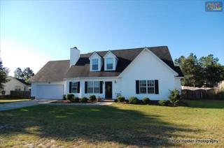 114  Dempsey Drive  , Lexington, SC 29073 (MLS #361818) :: Exit Real Estate Consultants