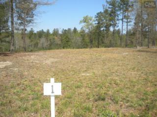 483  Seegars Mill Road  1, Camden, SC 29020 (MLS #361843) :: Exit Real Estate Consultants