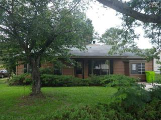 309  Firebrick Lane  , Columbia, SC 29229 (MLS #361863) :: Exit Real Estate Consultants