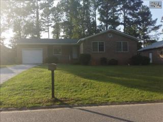 908  Aaron Drive  , Columbia, SC 29203 (MLS #361874) :: Exit Real Estate Consultants