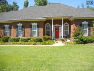 328  Sienna Drive  , Chapin, SC 29036 (MLS #361908) :: Exit Real Estate Consultants
