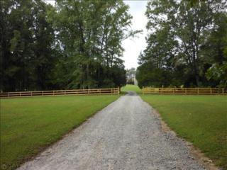 30  Calico Circle  , Ridgeway, SC 29130 (MLS #361936) :: Exit Real Estate Consultants