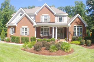 124  Brighton Court  , Lexington, SC 29072 (MLS #362000) :: Exit Real Estate Consultants