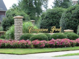 117  Congaree Park Drive  19, West Columbia, SC 29169 (MLS #362022) :: Exit Real Estate Consultants