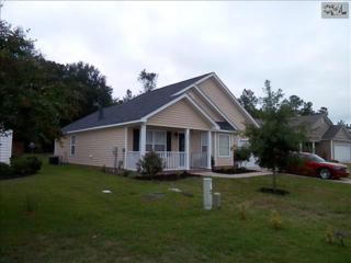 371  Colony Lakes Drive  , Lexington, SC 29073 (MLS #362620) :: Exit Real Estate Consultants