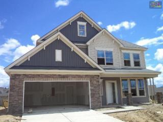 228  Jordan Springs Circle  25, Columbia, SC 29229 (MLS #362873) :: Exit Real Estate Consultants