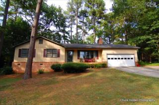 648 N Royal Tower Drive  , Irmo, SC 29063 (MLS #362896) :: Exit Real Estate Consultants