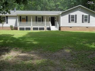 1151  Old Lexington Highway  , Chapin, SC 29036 (MLS #362899) :: Exit Real Estate Consultants